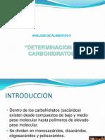 PresentacionCarbohidratos