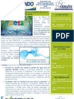 Boletin de Rse - 01-13