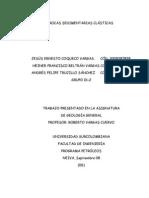 Informe Rocas Sedimentarias Clasticas
