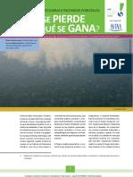 Quemas agropecuarias e incendios forestales ¿Qué se pierde y qué se gana?
