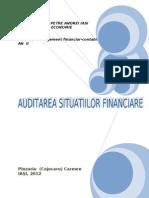 55611033 Raport Audit Proiect Final