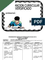 PROGRAMACION CURRICULAR MULTIGRADO.doc