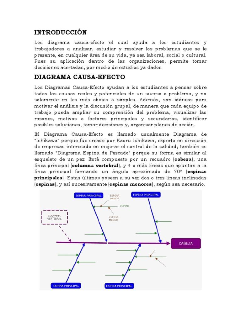 DIAGRAMA CAUSA EFECTO RESUMEN.docx