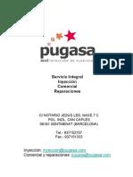presentación pugasa.pdf