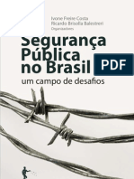 Seguranca Publica No Brasil