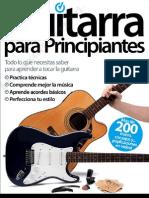 Guitar Unico