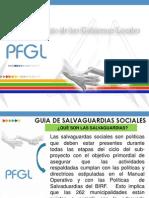 PRESENTACIÓN SALVAGUARDÍAS SOCIALES