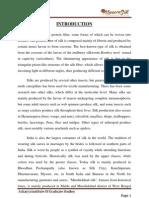 Internship report on ksic