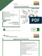 IdentificacionbiodiversidadOKUDR.pdf