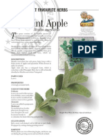 Mint Apple Fragrant