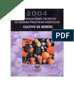 Buenas Practicas Agricolas - Berries