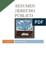 Resumen DP I PROPEDEUTICA