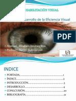 Unidad V.eficiencia visual.pptx