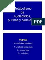 Purinas y Pirimidinas