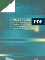 estudio_cualitativo_espanol