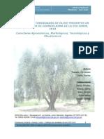 Presentación e Instructivo.pdf