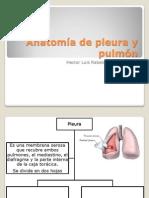 Anatomía de pleura y pulmón.pptx