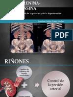 Sistema renina-angiotensina.pptx