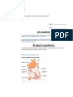 talyn pig heart dissection document edited