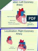 Localization of Coronary Arteries