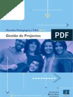 GESTÃO DE PROJECTOS [UE - 2000]