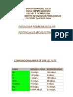1. Fisiologia Del Sistema Neuromuscular