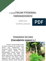 Sappan Lignum.pptx