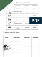 Imprimer Exercices Les Regimes Alimentaires Des Animaux