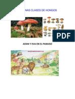 ALGUNAS CLASES DE HONGOS (1).docx