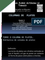 Hidráulica de Columnas de Platos - Exposición - Equipo 2
