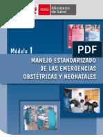Manejo Estandarizado Emerg Obste y Neonatales1138_dgsp275-1