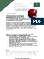 3-protecciondelsistemaoperativo-090713104509-phpapp01 (1)