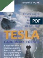 Aleksandar Milinković, Tesla, čarobnjak i genije