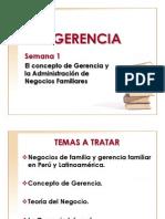 29617916 El Concepto de Gerencia y La Administracion de Negocios Familiares