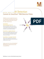 Controls for SmartFlare™ RNA Detection Probes