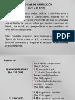 AnalisisdelosProcedimientosdeAdopcionEnfoqueLegal.pptx