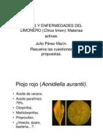 PLAGAS Y ENFERMEDADES DEL LIMÓN _(Citrus limon