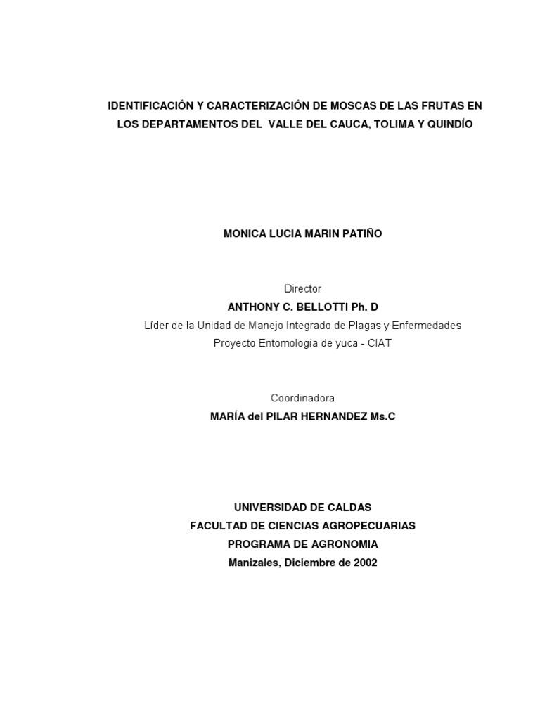 IDENTIFICACIÓN Y CARACTERIZACIÓN DE MOSCAS DE LAS FRUTAS EN VALLE ...