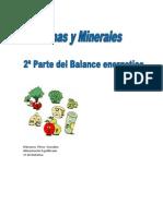 Balance Energetico Vitaminas y Minerales