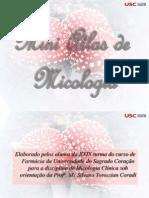 miniatlas micologia