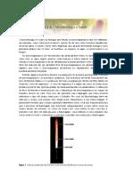Microbiologia Experimental