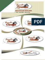 Saddletech System Brochure 2012
