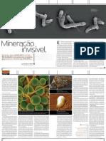 biomineracao.pdf