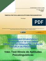 068_Temática Test Illinois de Aptitudes Psicolinguísticas