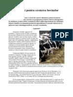 Hormoni pentru cresterea bovinelor
