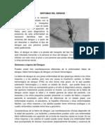 SÍNTOMAS DEL DENGUE.docx