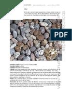 Manual Cultivo Crasas Lithops Neocultivos