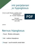 Anatomi Perjalanan Nervus Hypoglosus