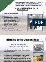 Zcomunidad Lomas de Zapallal II Etapa