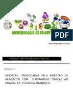 Importância dos Microrganismos no Alimento
